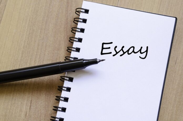 Unique Essay Writing Plan