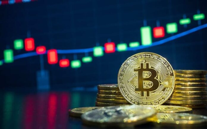 Want to become a professional BTC trader? Here's all you need!