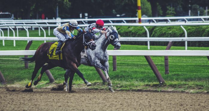 3 Best Netflix Shows/Movies for Horse Lovers