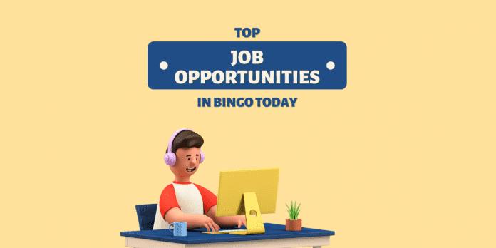 Top Job Opportunities in Bingo Today